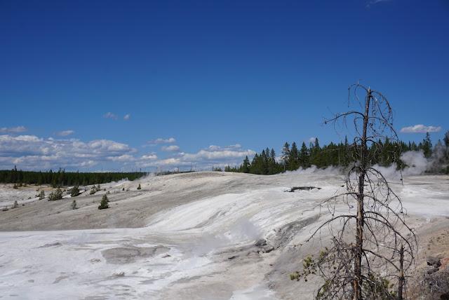 norris geyser basin fumarole landscape