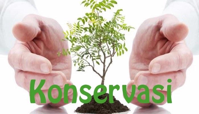 Pengertian Konservasi Tujuan Fungsi Manfaat Contoh Dan Macam