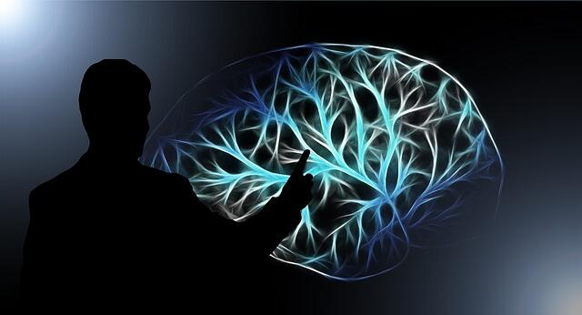 How to Store Information in Long-Term Memory?
