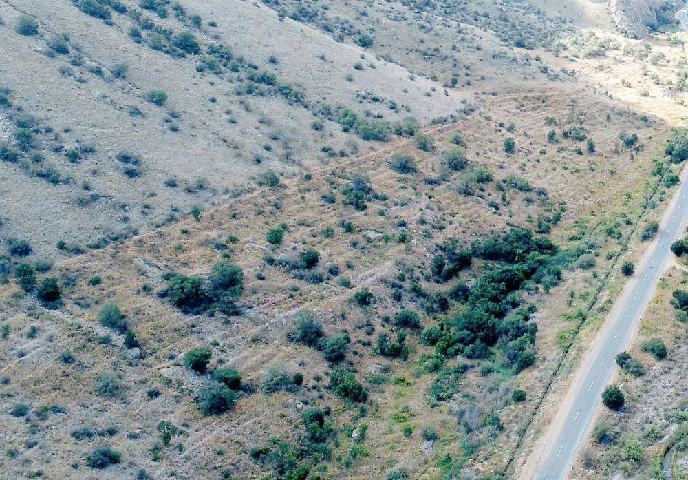 Виноградник в каньоне Гнишикадзор