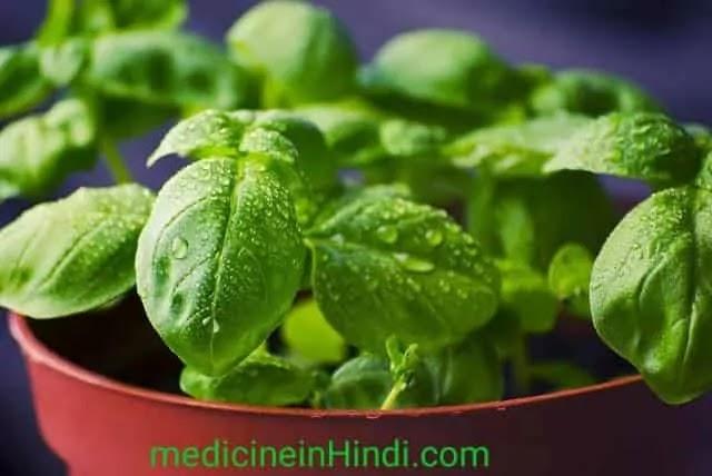 Leucorrhoea In Hindi | Safed Pani Aane ka Reason |