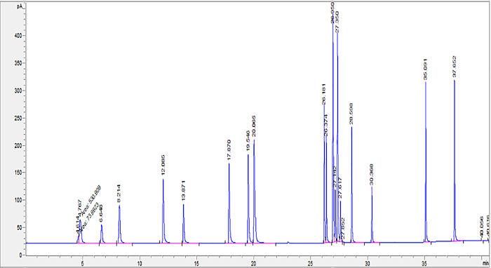 Reporte de cromatografía de gases