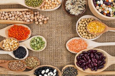 Protein Kaynakları