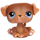 Littlest Pet Shop Multi Pack Pug (#901) Pet