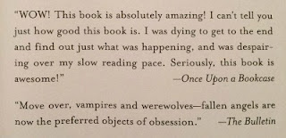 Quote in Fallen by Lauren Kate special US edition