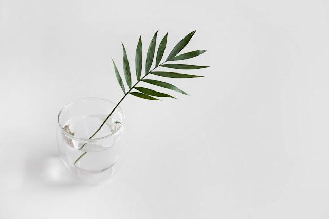 blog minimaliste