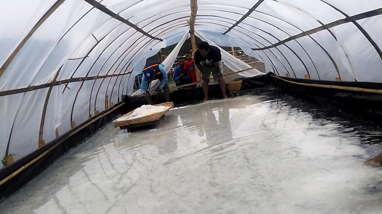 Kren !, Nelayan Pesbar Membuat Garam Sistem Tunnel