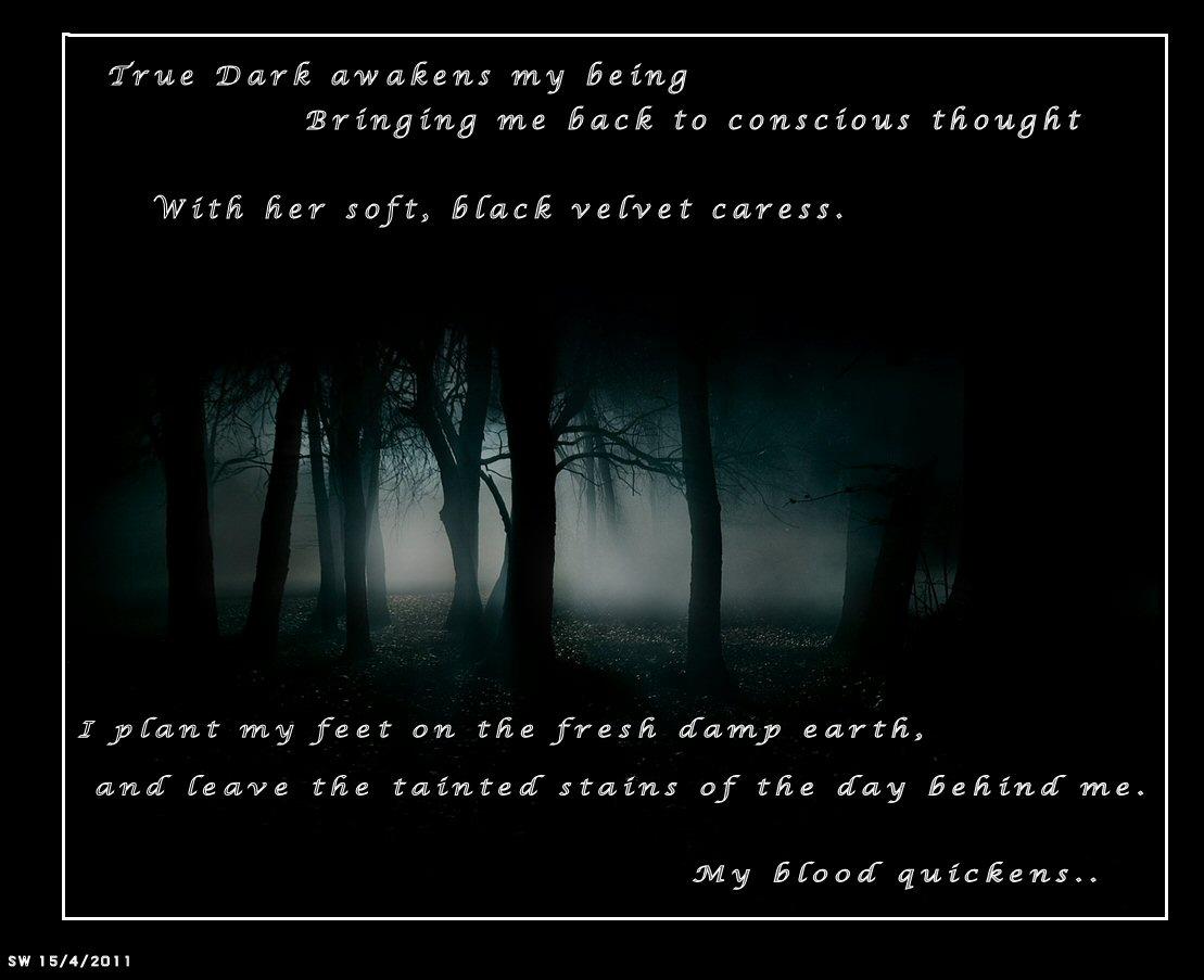 Dark Poetry Quotes. QuotesGram
