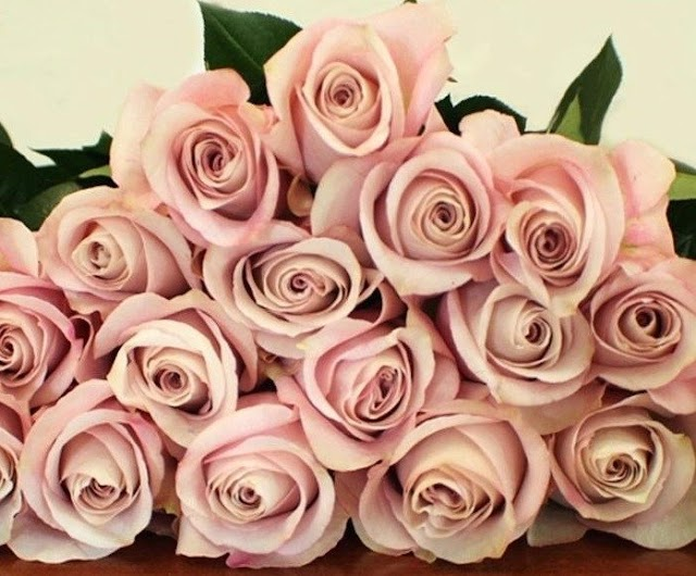 How To Become One Of The Wholesale Rose Suppliers?