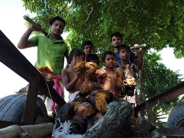 পটুয়াখালীতে ইটবাড়িয়ান সোসাইটির উদ্যোগে  গ্রামব্যাপী তাল বীজ রোপন
