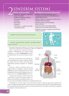 6. Sınıf Fen Bilimleri Ders Kitabı Cevapları Sevgi Yayınları Sayfa 48