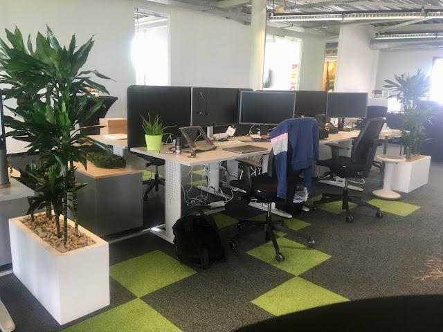 planten voor bedrijf huren of kopen met onderhoudscontract prijzen op aanvraag