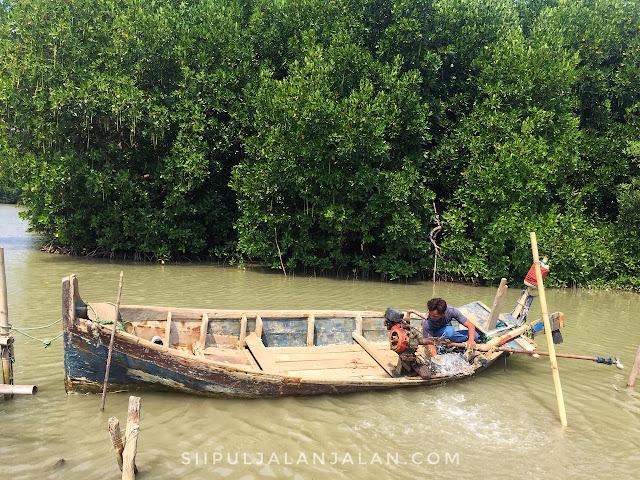 Perahu klotok-klotok di Muaragembong
