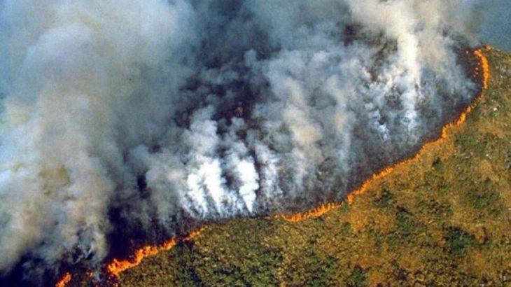 L'Amazonie en flamme : Les stars réagissent sur les réseaux sociaux