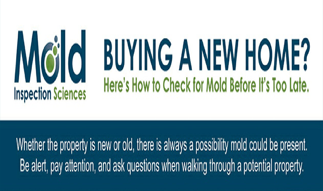 Buying a New Home? Here's How to Check for Mold Before It's Too Late #infographic