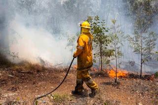 Incêndios na Austrália obrigam 8 mil a deixarem casas
