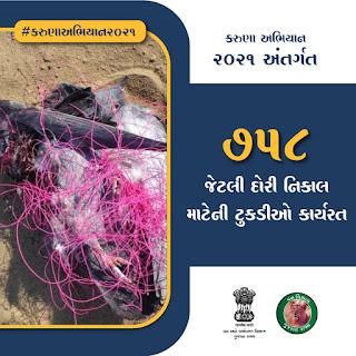 Animal Gujarat Help Line Numbers
