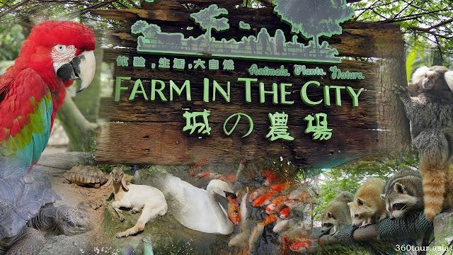 muka depan petting zoo farm in the city