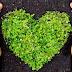 Κάνεις σωστά ανακύκλωση; Διάβασε και μάθε