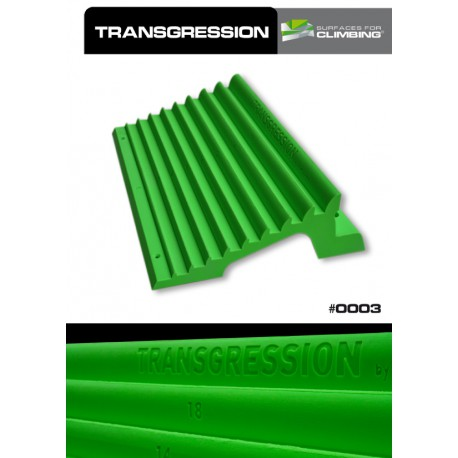 Transgression and Progression Hangboard