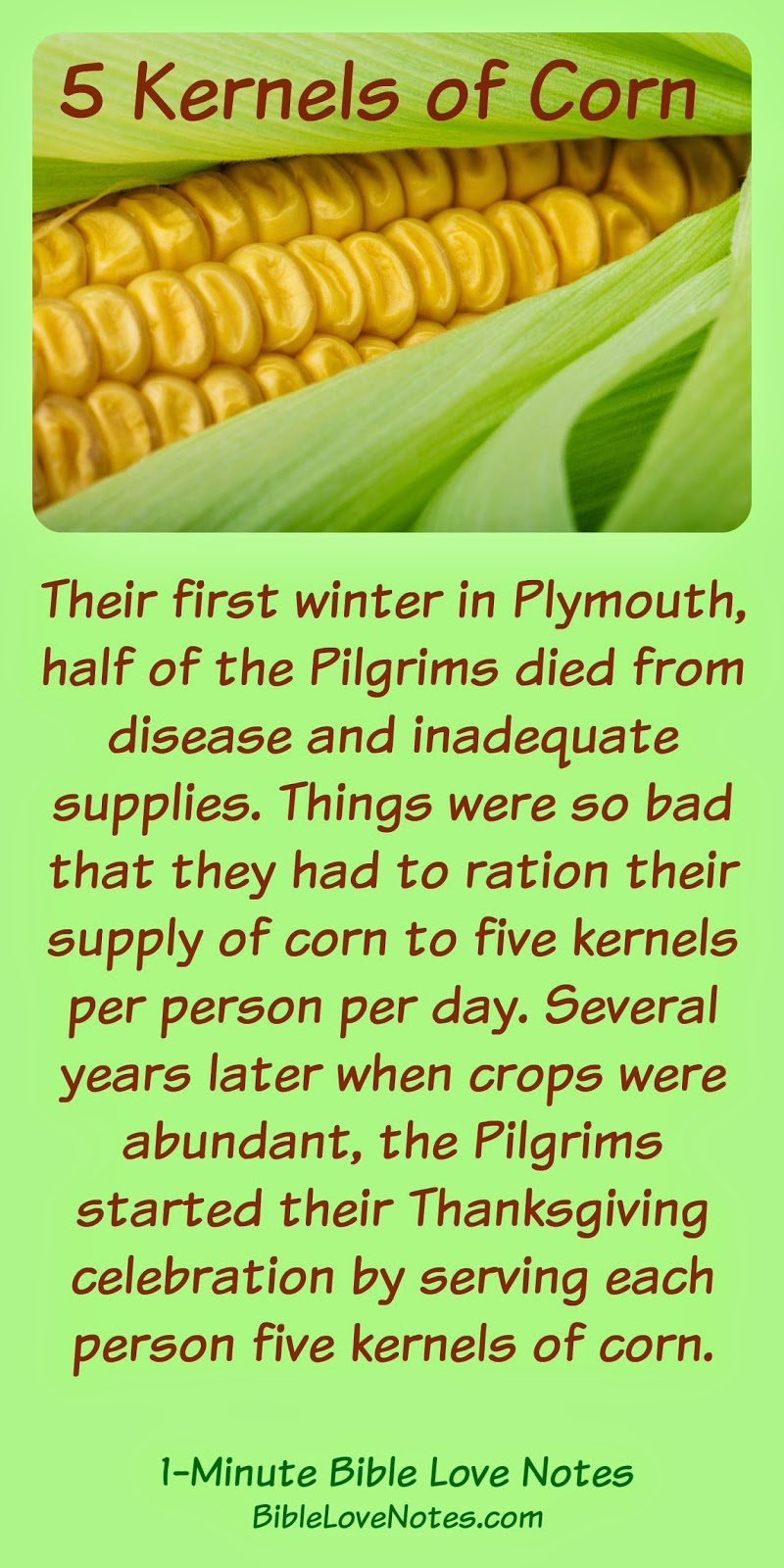 Pilgrims, story of hardship and thanksgiving, Thanksgiving heritage