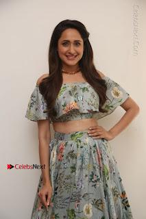 Actress Pragya Jaiswal Stills in Floral Dress at turodu Interview  0115.JPG