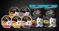 Logo The Insiders : partecipa e diventa una delle 1.250 tester dei prodotti Cesar