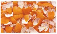 संतरा के साथ-साथ छिलके के फायदे- Benefits of orange peel along with orange