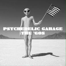 Psychadelic Garage The 60's