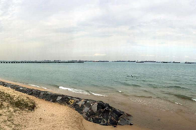 Ms Silvia Hajas took a picture of the sea at East Coast Park that showed seven boys swimming about 50m away from the shoreline.