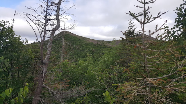 Sentier sur le mont Vallières-de-Saint-Réal