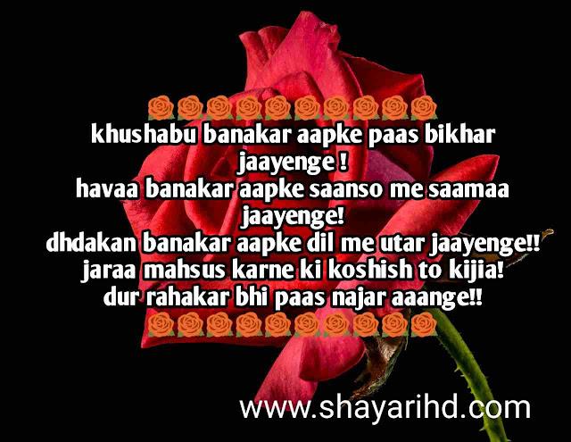 30+ Love Shayari in Hindi, True Love Status, Best Love Sms