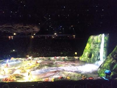 A review of  Cirque du Soleil, Toruk