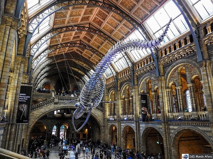 Museu da História Natural - O que fazer em Londres: 48 atrações imperdíveis