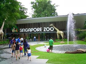 Paket Singapore Murah