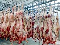 Carne estragada e contaminada era vendida normalmente