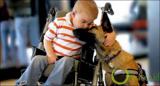 Si Kecil Lucas dan Anjingnya