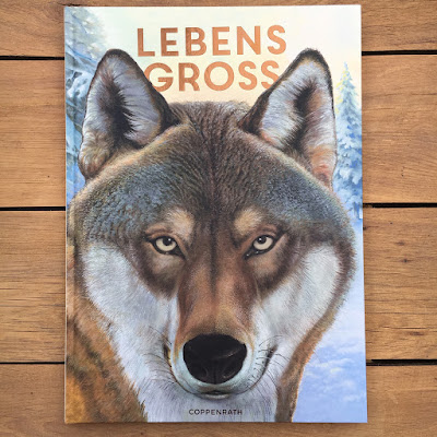 """""""Lebensgroß: Tiere des Waldes"""" von Holger Haag, illustriert von Manfred Rohrbeck, erschienen in der Reihe Nature Zoom des Coppenrath Verlag"""