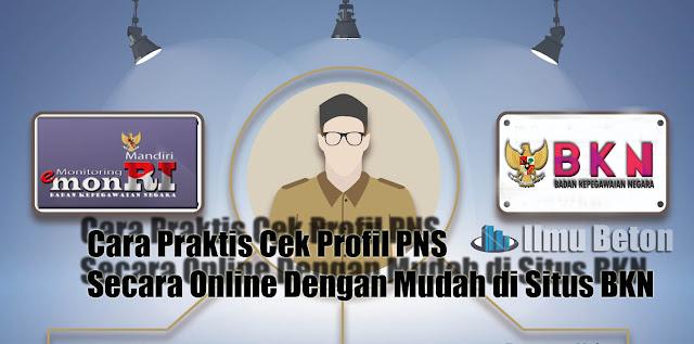 Cara Terbaru Cek Profil PNS Secara Online Dengan Mudah di Situs BKN
