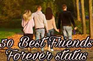 50 Best Friends Forever Status   Best Friend Status In English