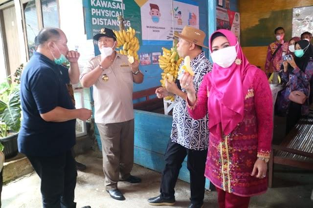 Tertarik Dengan Pisang Mas, Dua Menteri dan Gubernur Kunjungi Tanggamus