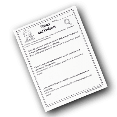 Third Grade Worksheets science