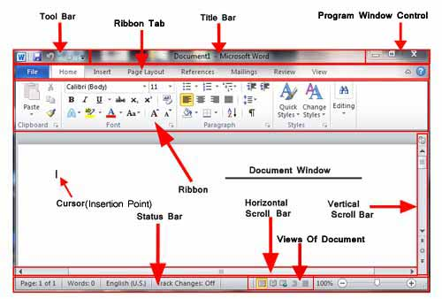 MS Word Window