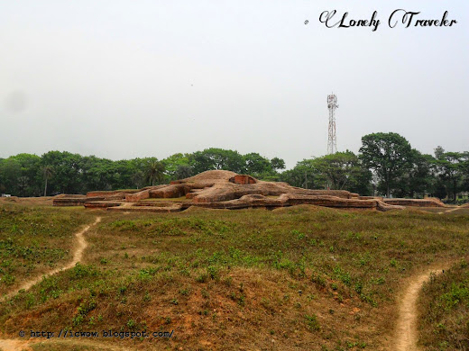 Palace of king Bhoj - Comilla