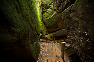 An image of a wooden path at Dismals Canyon, Phil Campbell, AL