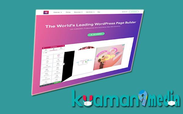 Elementor Pro v3.3.2 Free Download Premium Plugin