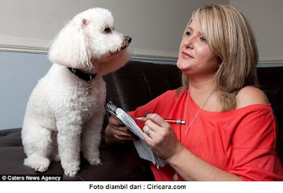 Berbicara Dengan Anjing - Kumpulan Artikel Pengetahuan Umum