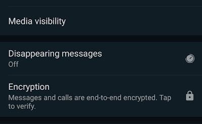 WhatsApp's Encryption Check