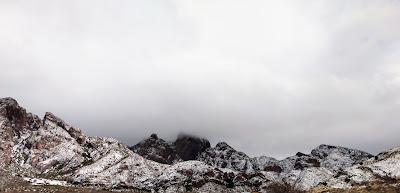 organ mountains with snow winter 2021