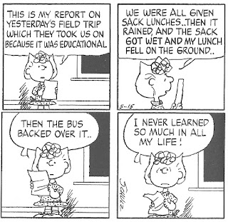 sally brown school report learning